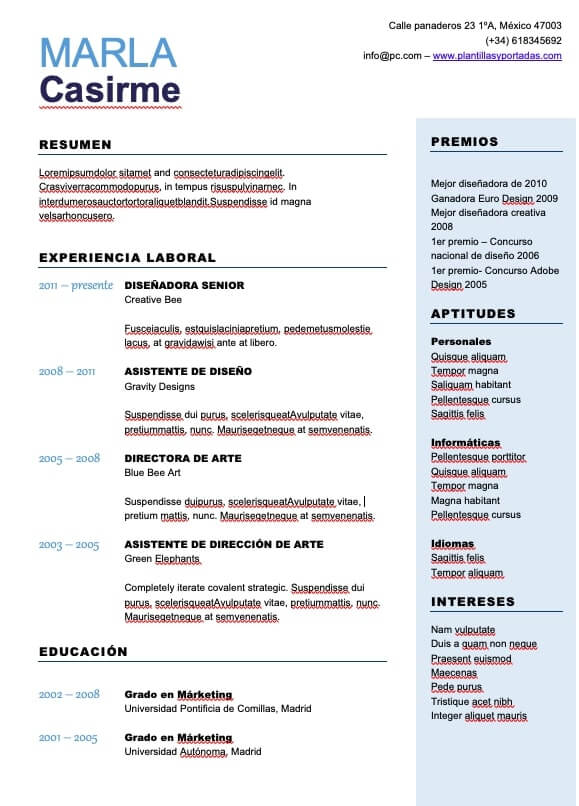 curriculum vitae plantilla word